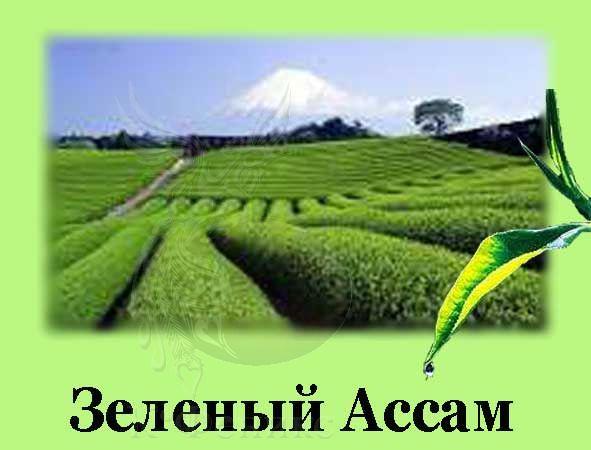 Assam superfine green tea - Зеленый чай Ассам