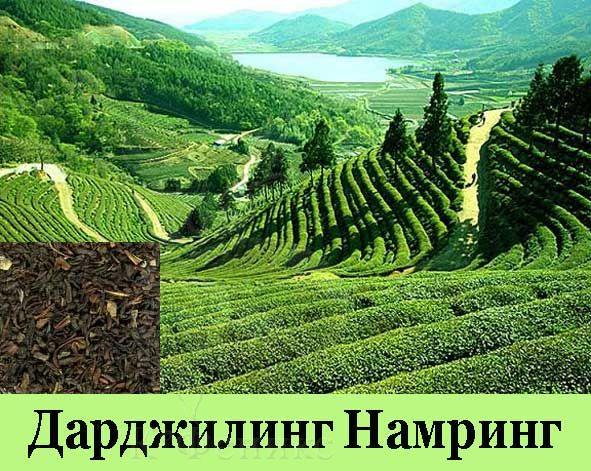 Darjeeling NAMRING - Дарджилинг Намринг