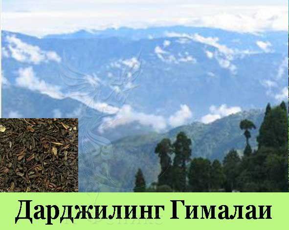 Darjeeling Gimalai - Дарджилинг Гималаи