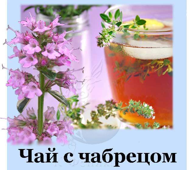 Tea chabrec - Чай с чабрецом